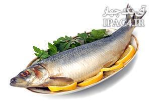 آیا استفاده از ماهی بهمراه استخوان مفید است